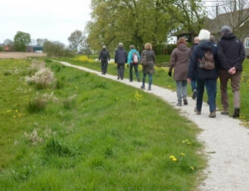 Wandelgids Wandelen in Delfland