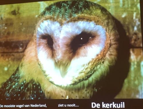 Stadsbijeenkomst in Delft in trek